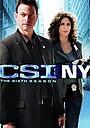 Серіал «CSI: Нью-Йорк» (2004 – 2013)
